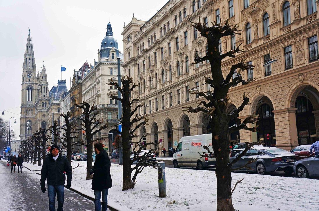 Viena: crónica de un mendigo en la ciudad imperial