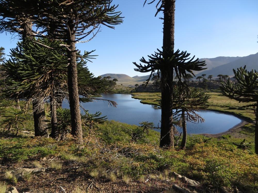 La Laguna Escondida