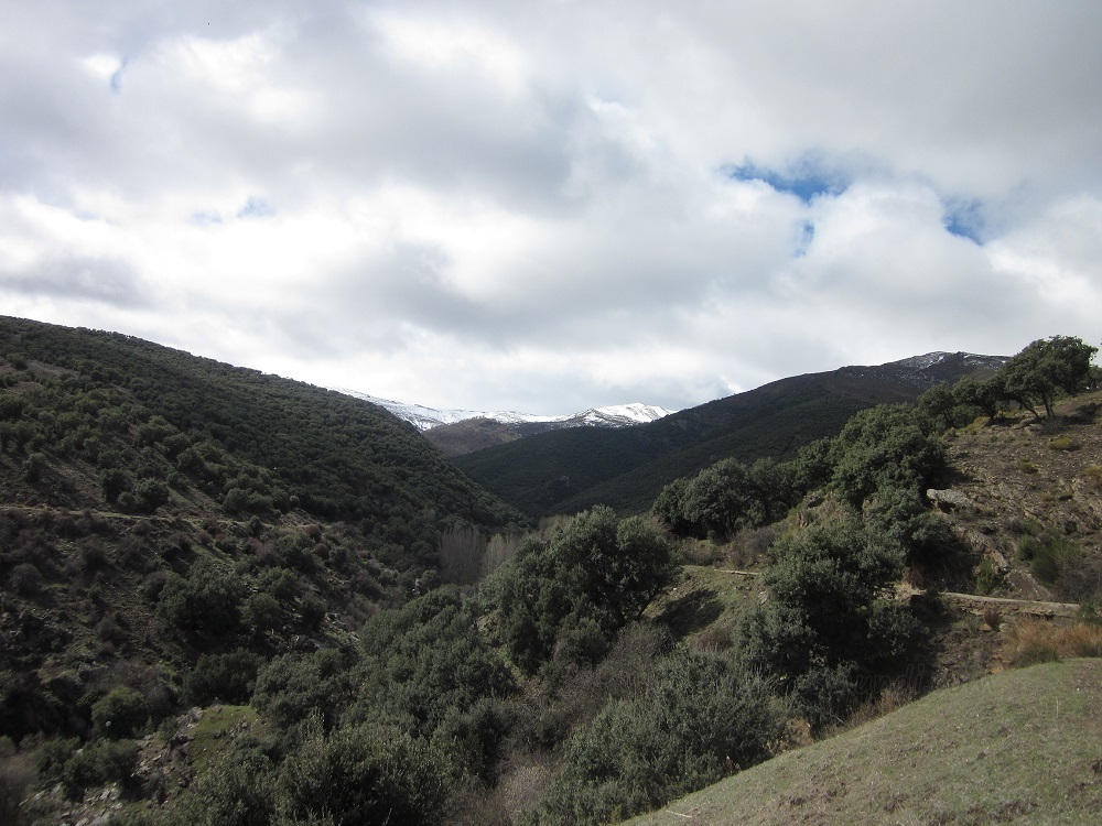 Panorámica de Sierra Nevada desde el camino de Lugros