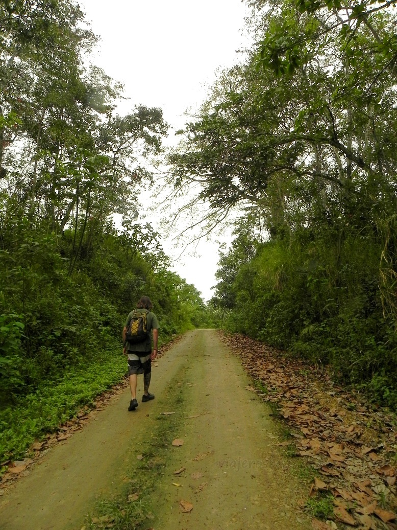 Camino por la selva a la Playa Negra