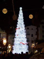 Paseando cerca del árbol de Navidad