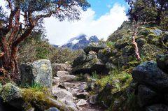 Final del trekking de regreso, Parque Nacional Huascarán