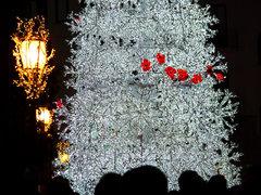 Acercándose al árbol de Navidad