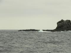 Tour avistamiento Ballenas Jorobadas, puerto López, Ecuador