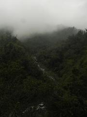 Camino de selva hacia San Miguel de Tucumán