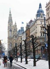 RingStraße y el Ayuntamiento de Viena