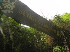 Sendero Macuco en Parque Nacional Iguazú