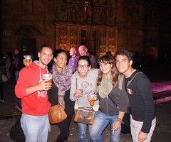 Erasmus en Santiago de Compostela