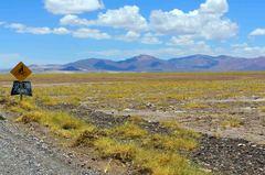 Parte argentina de la Puna de Atacama