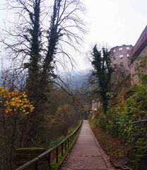 Camino al Palacio de Heidelberg, Alemania