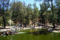 Bosque de los Colomos, Guadalajara