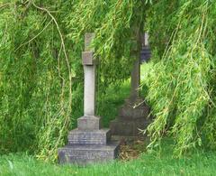 Los largos y suaves brazos del sauce acarician las tumbas