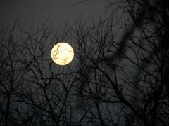 La fría noche en Parque Nacional El Rey