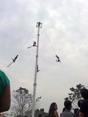 Voladores de Papantla, Festival Cumbre Tajín 2015