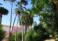 Parte alta del parque Carlos I