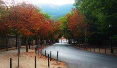 Postal del verano en El Escorial, España