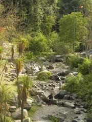 Quebrada de San Lorenzo, Salta