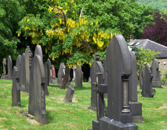 Tumbas de la necropolis de Huddersfield