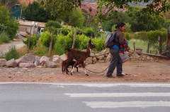 En la carretera de Purmamarca