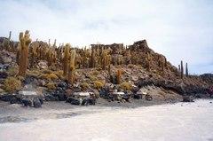 Isla Incahuasi, con los cactus gigantes
