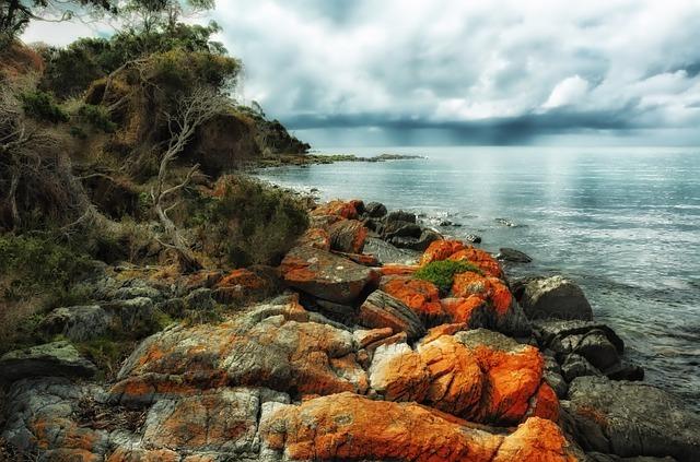 Playa de Tasmania
