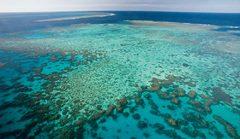 Cairns barrera de coral