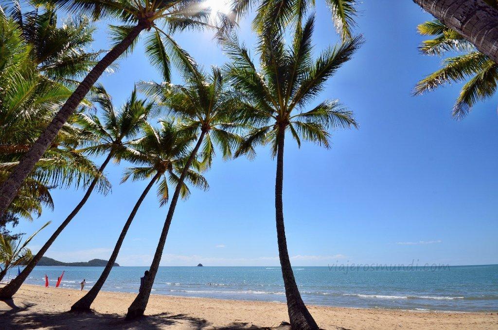 large.palm-cove-australia-11931_1024x678.jpg.b5ed2ae1c5ae0821e7335f2d51f044f8.jpg