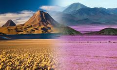 Las dos caras del desierto