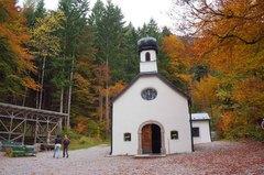 En los bosques alpinos de Innsbruck, Austria