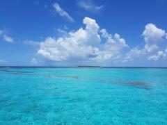 Isla del Caribe