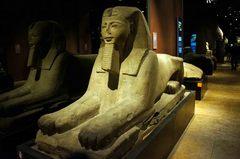 Esfinge en el Museo Egipcio de Turín