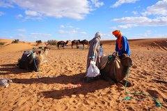 Caravanas de camellos en Merzouga, Marruecos