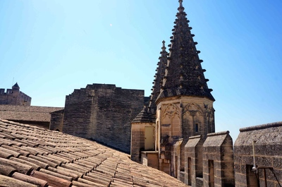 Torres del Palacio papal de Aviñón