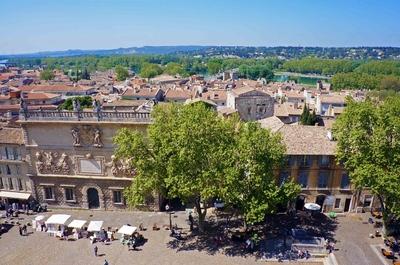 Vista de Aviñón desde el Palacio papal