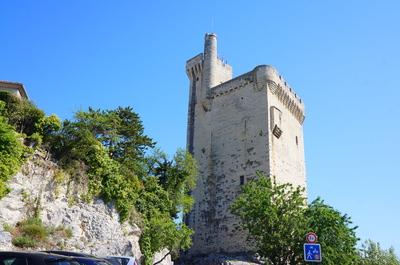 Torre Philippe-le-Bel en Aviñón
