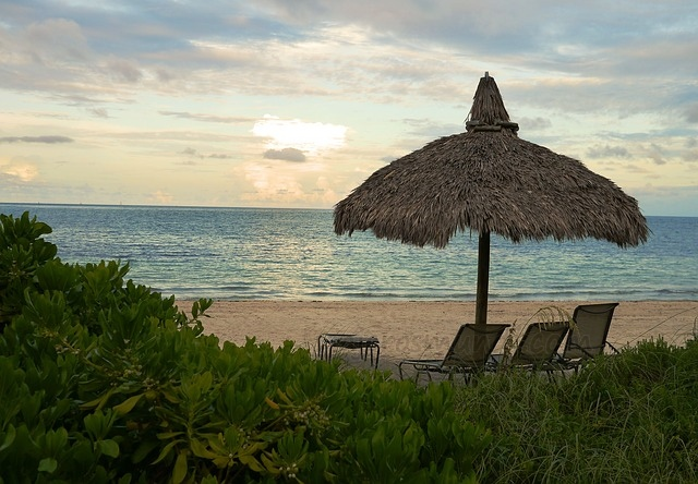 Playa en Miami.jpg
