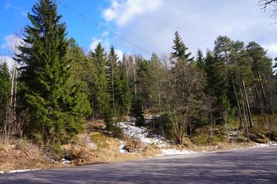 Montañas boscosas de Oslo