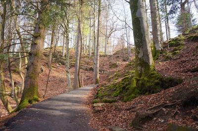 Bosque de Fantoft en Bergen, Noruega