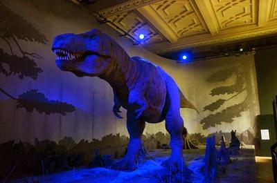 T-Rex tamaño real en el Museo de Historia Natural de Londres