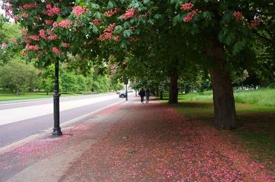 Hyde Park en Londres