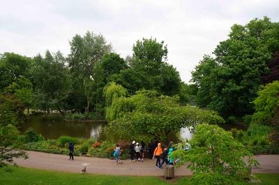 Jardines del Palacio de Buckingham, Londres