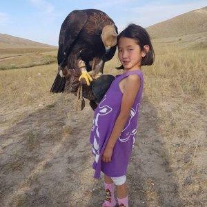 Caza con águilas en Kirgizstan