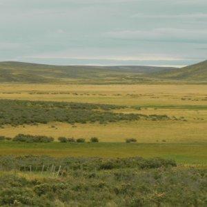 Los campos chilenos australes