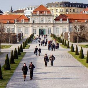 vienna-1476353_640.jpg