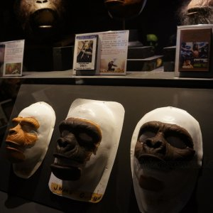 """Máscaras de """"El planeta de los simios"""", Museo del cine en Lyon"""