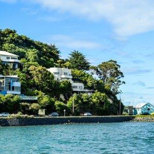 La Isla Sur de Nueva Zelanda