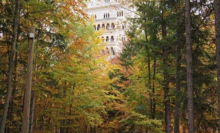 Sendero al castillo de Neuschwanstein, Alemania