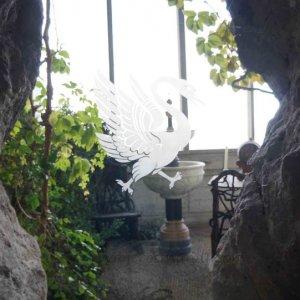 Símbolo de cisne, Castillo de Neuschwanstein