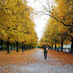 Jardines imperiales de Múnich