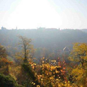 Paisajes alrededor de Rothenburg